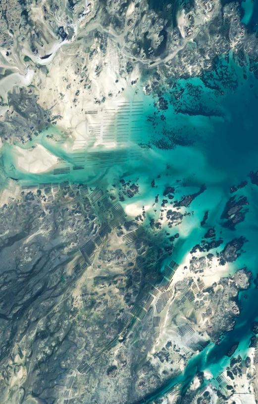 Zoom sur les parcs à huîtres proche du Sillon de Talbert (Bretagne)