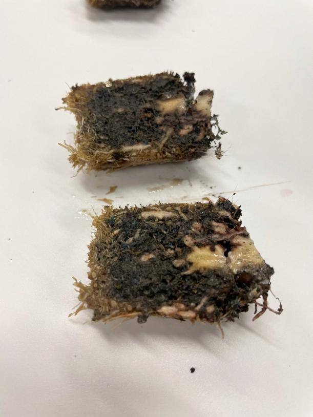 Substrat à base de régolithe